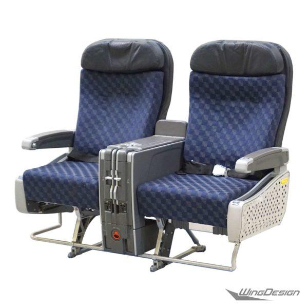 Flugzeug Doppelsitzbank American Airlines